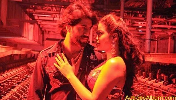 Mumaith-Khan-Spicy-Stills-at-Bhagyanagaram-Movie-2