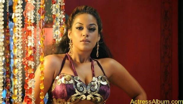 Mumaith-Khan-Spicy-Stills-at-Bhagyanagaram-Movie-4