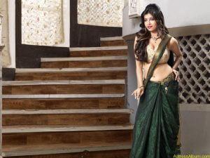Munjal-Madhura-Hot-Wallpapers4