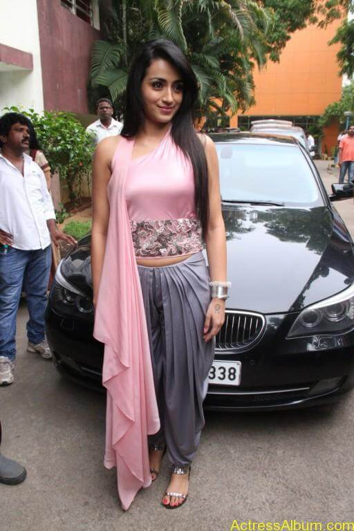 trisha-latest-stills-at-sagalakala-vallavan-appatakkar-movie-press-meet-