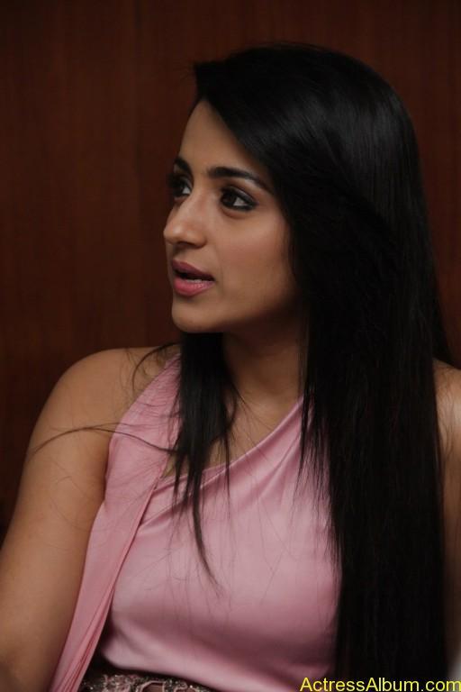 trisha-latest-stills-at-sagalakala-vallavan-appatakkar-movie-press-meet-12