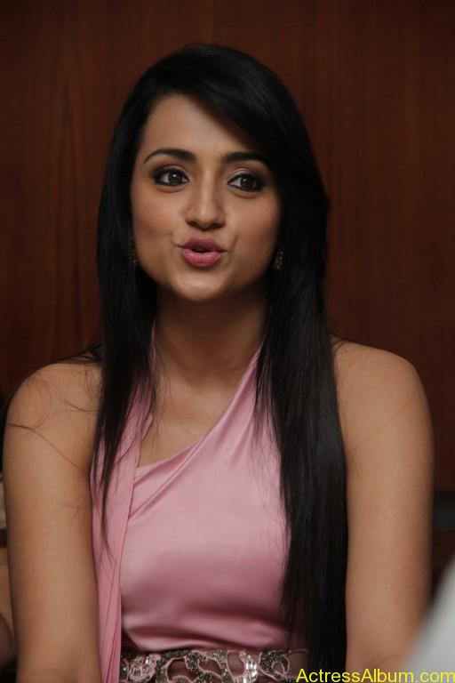 trisha-latest-stills-at-sagalakala-vallavan-appatakkar-movie-press-meet-15