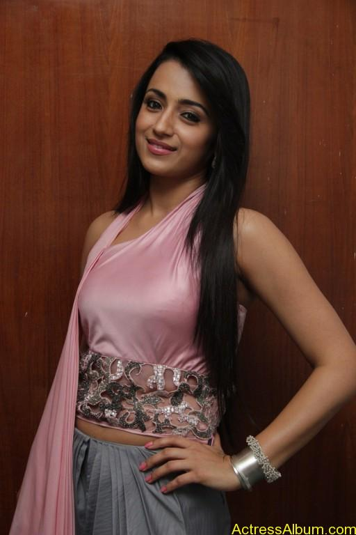 trisha-latest-stills-at-sagalakala-vallavan-appatakkar-movie-press-meet-8
