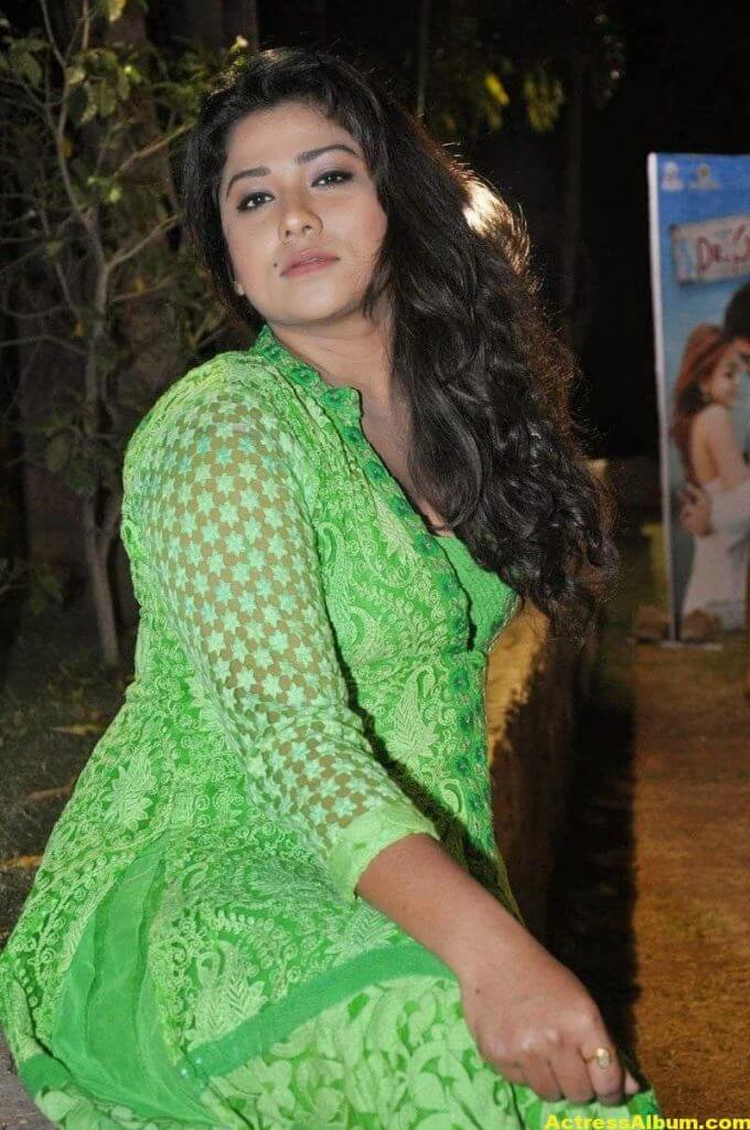 Actress Jyothi Latest Cute Hot Beautiful Green Dress Spicy Photos Gallery At Dr.Salim Movie Audio Launch (31)