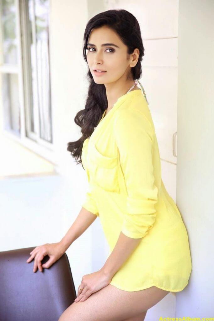 Actress Meenakshi Dixit Latest Glam Photoshoot Stills HQ 1