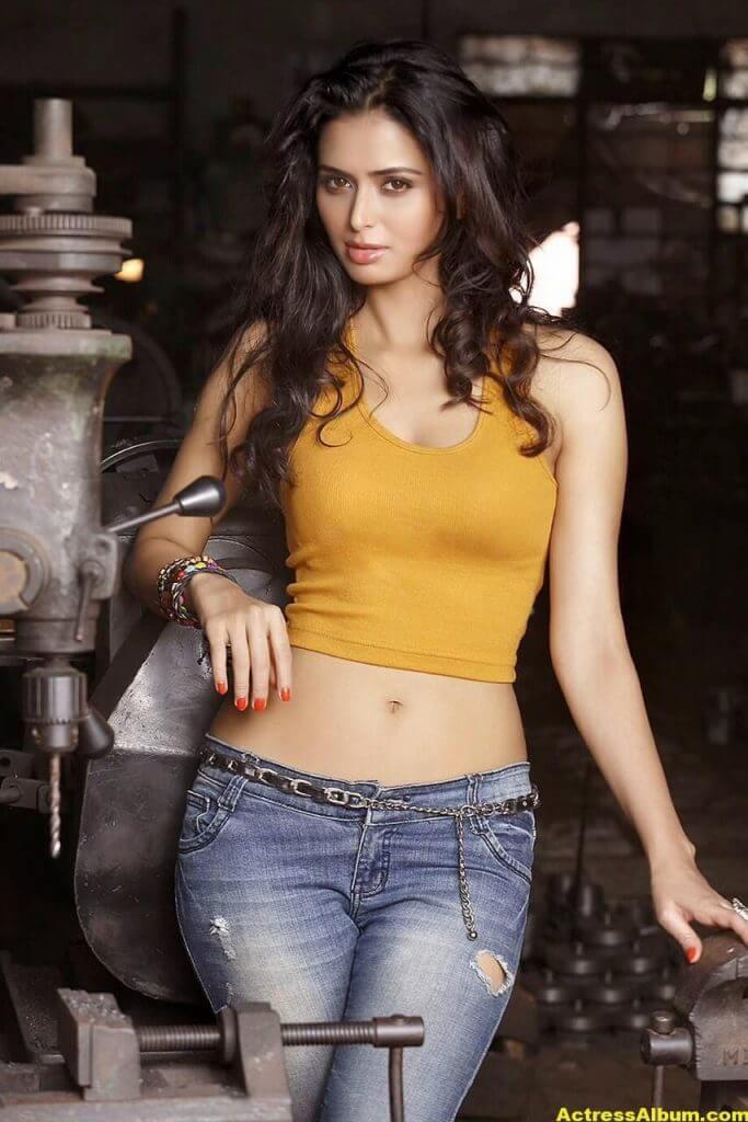 Actress Meenakshi Dixit Latest Glam Photoshoot Stills HQ 9