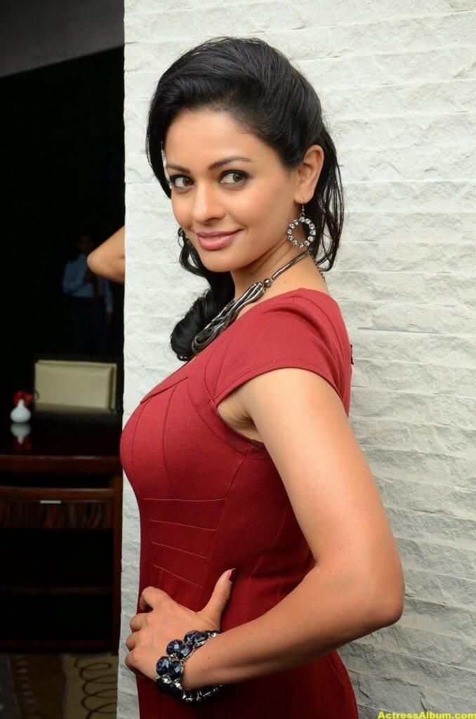 Actress Pooja Kumar Photos in Red Dress 1