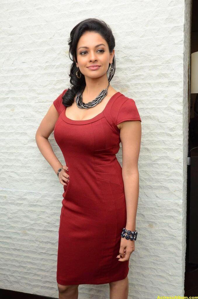 Actress Pooja Kumar Photos in Red Dress 3