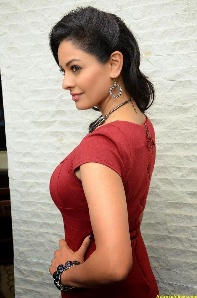 Actress Pooja Kumar Photos in Red Dress 4