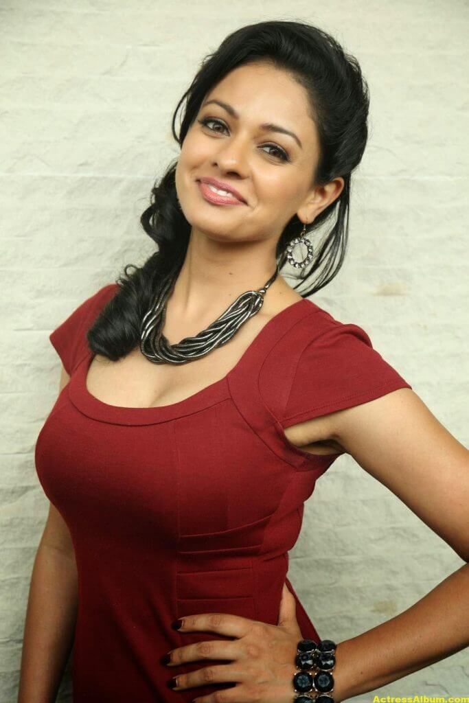 Actress Pooja Kumar Photos in Red Dress 5