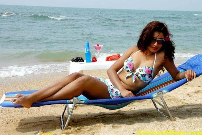 Dimple-Chopade-Hot-Bikini-Images (4)