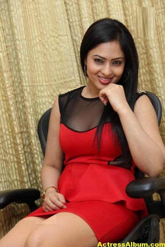 Nikesha Patel Latest Gallery 2
