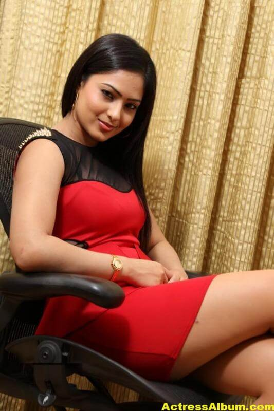 Nikesha Patel Latest Gallery 3