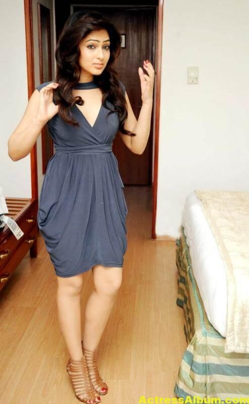 nikesha-patel-latest-hot-photos-6