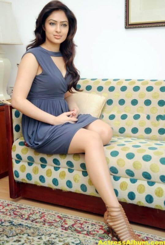 nikesha-patel-latest-hot-photos-8