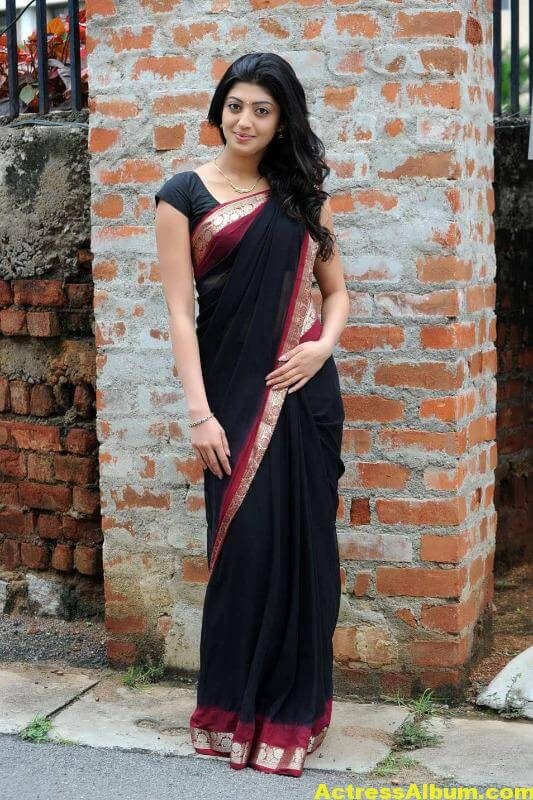 pranitha-hot-stills-in-saree-17