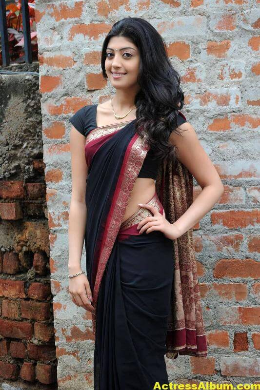 pranitha-hot-stills-in-saree-18