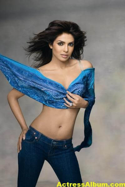 Priyanka Chopra exposed hot (9)