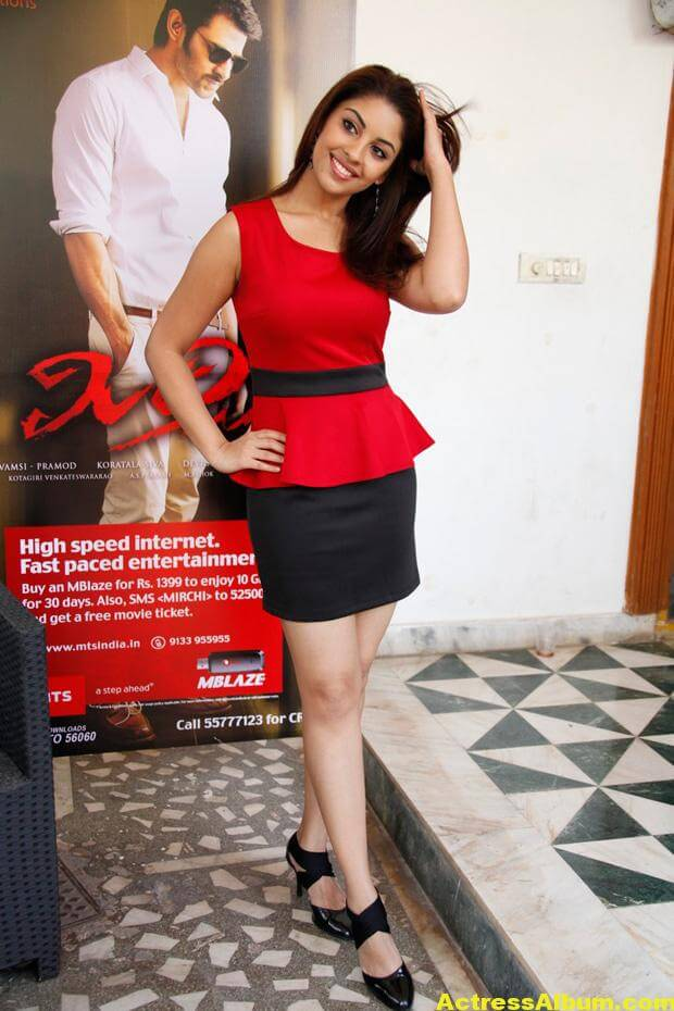 Richa Gangopadhyay Latest Photo Shoot Photos 5