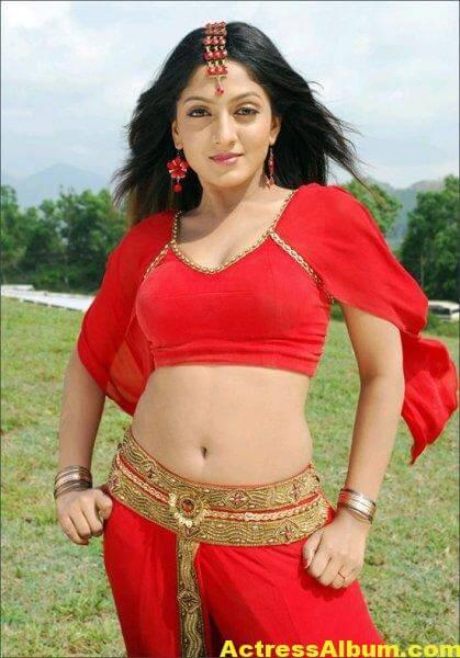 sheela-actress-hot-navel-bikini-pics-wallpapers-23
