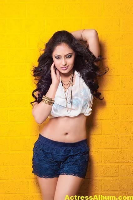 Tamil Actress Nikeesha Patel Glamarous Photo Shoot 6