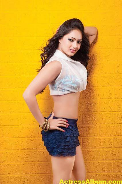Tamil Actress Nikeesha Patel Glamarous Photo Shoot 8