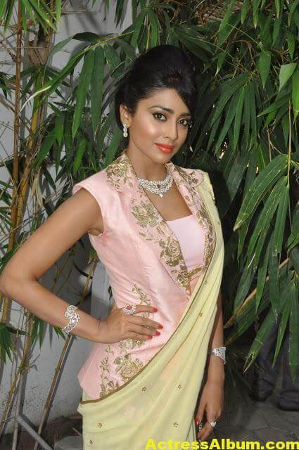 Tamil Actress Shriya Saran Beautiful Photo Gallery 4