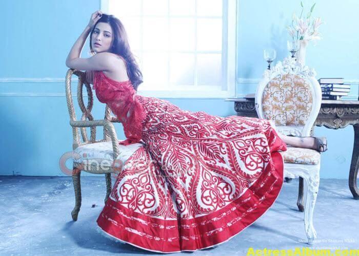 Tollywood Actress Most Beautiful Brides 17