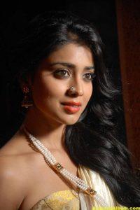 Actress Shriya exclusive saree pictures 1