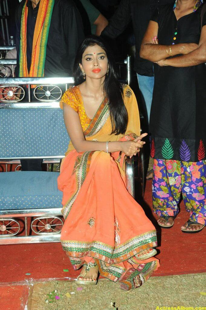 Actress Shriya Saran Latest Saree Photos 1