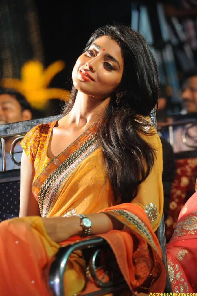 Actress Shriya Saran Latest Saree Photos 3