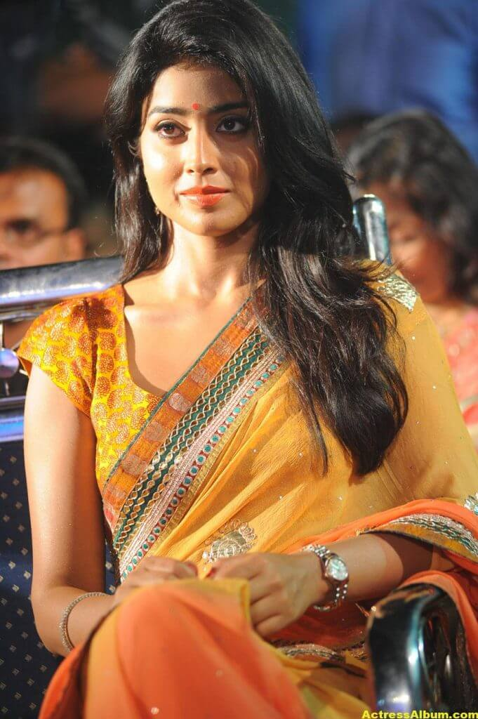 Actress Shriya Saran Latest Saree Photos 4
