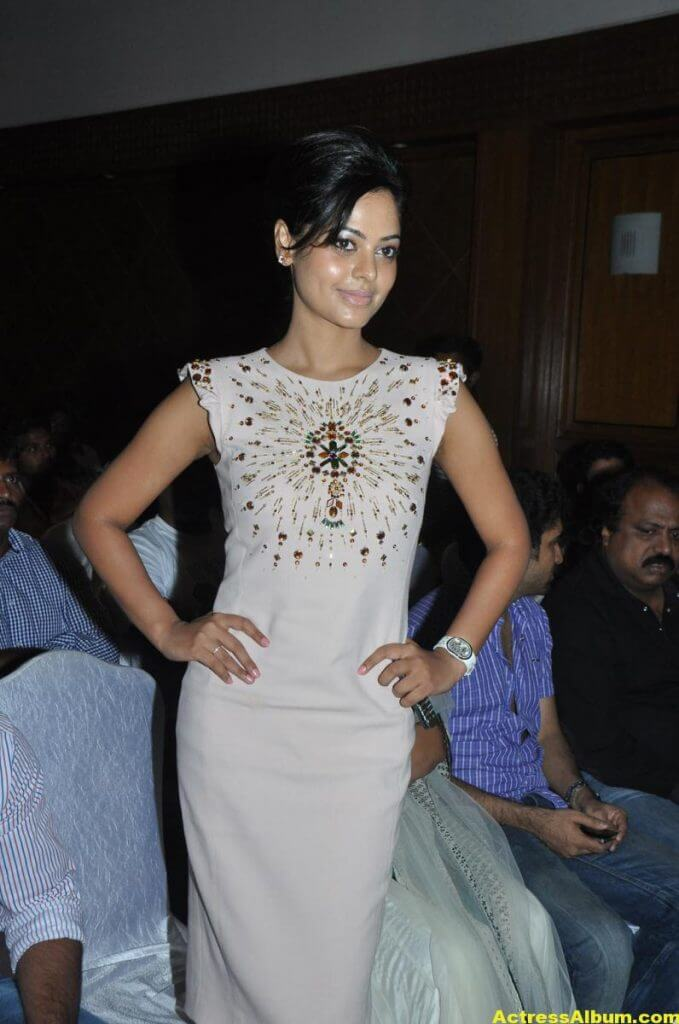 Bindu Madhavi Cute and Spicy Photo 3