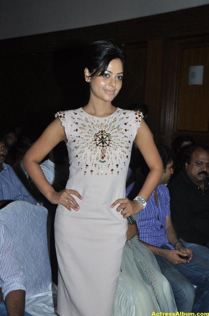 Bindu Madhavi Cute and Spicy Photo 3
