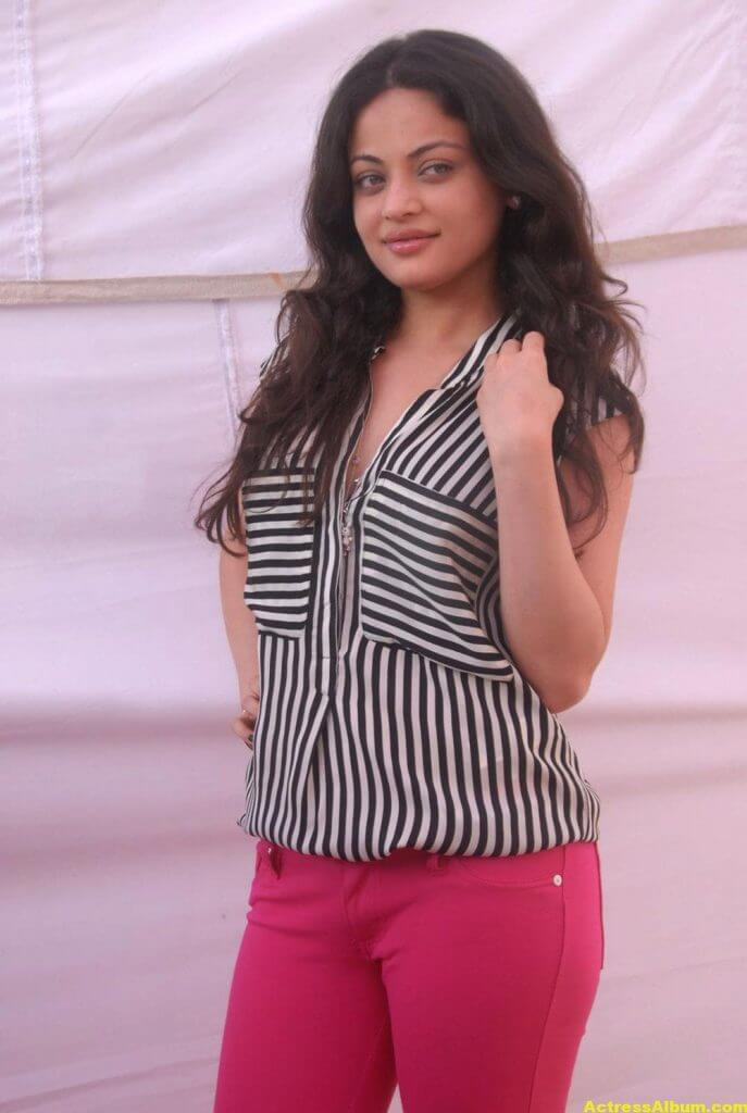 Sneha Ullal Latest Spicy Photo Gallery Stills 1