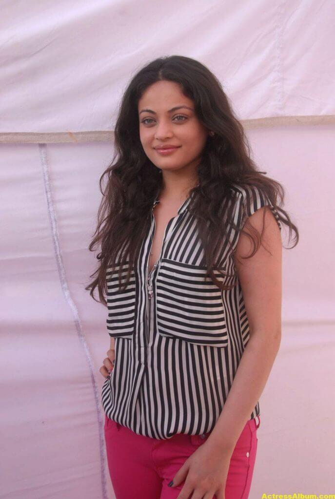 Sneha Ullal Latest Spicy Photo Gallery Stills 4