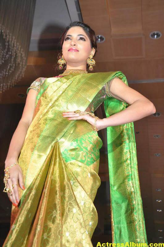 Tamil Actress Parvathy Omanakuttan Saree Stills 2