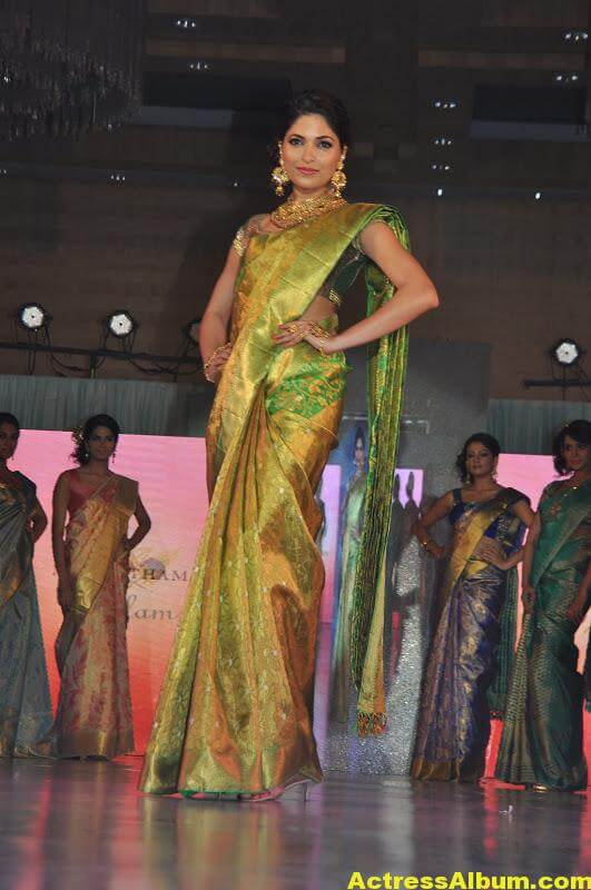 Tamil Actress Parvathy Omanakuttan Saree Stills 3