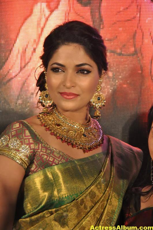 Tamil Actress Parvathy Omanakuttan Saree Stills 4