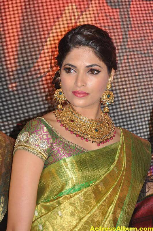 Tamil Actress Parvathy Omanakuttan Saree Stills 5