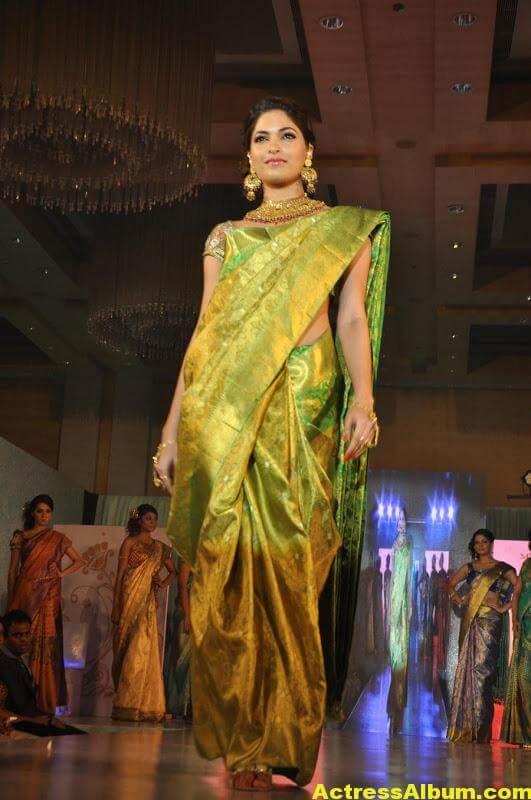 Tamil Actress Parvathy Omanakuttan Saree Stills