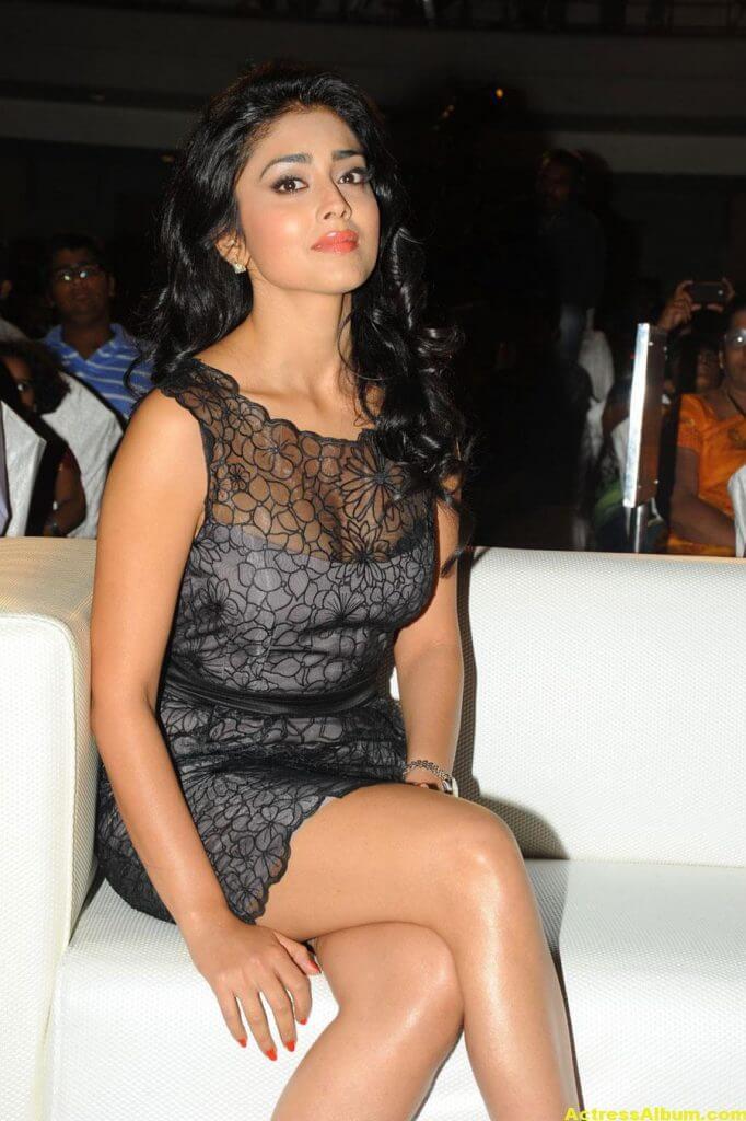 Tamil Actress Shriya Hot Dress 3