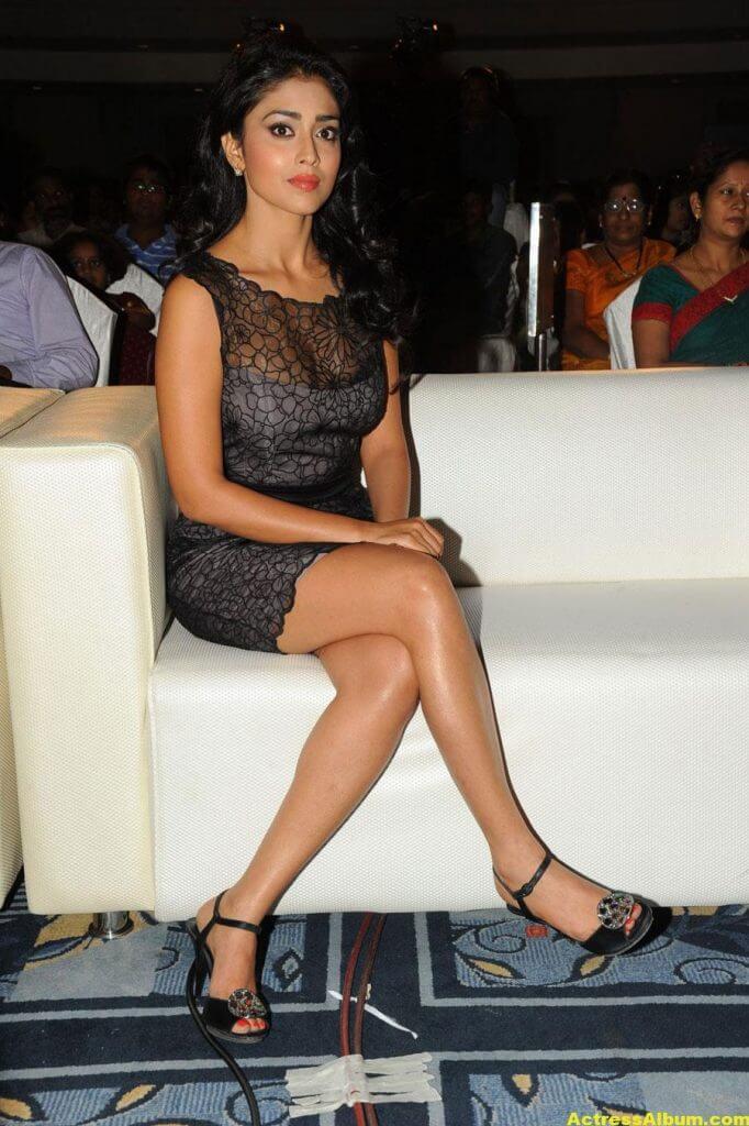 Tamil Actress Shriya Hot Dress 6