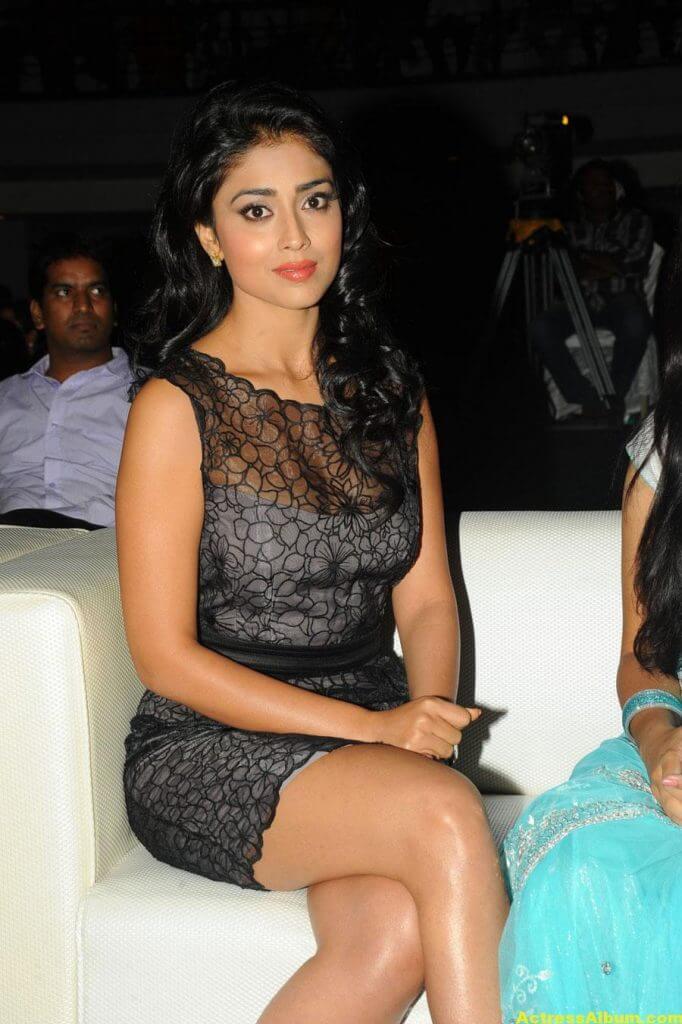 Tamil Actress Shriya Hot Dress 7