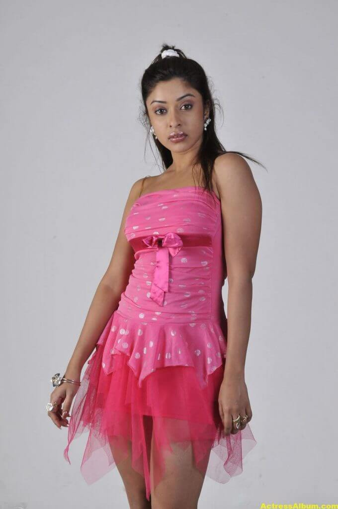 Actress Payal Ghosh Latest Pics in Pink Dress 2