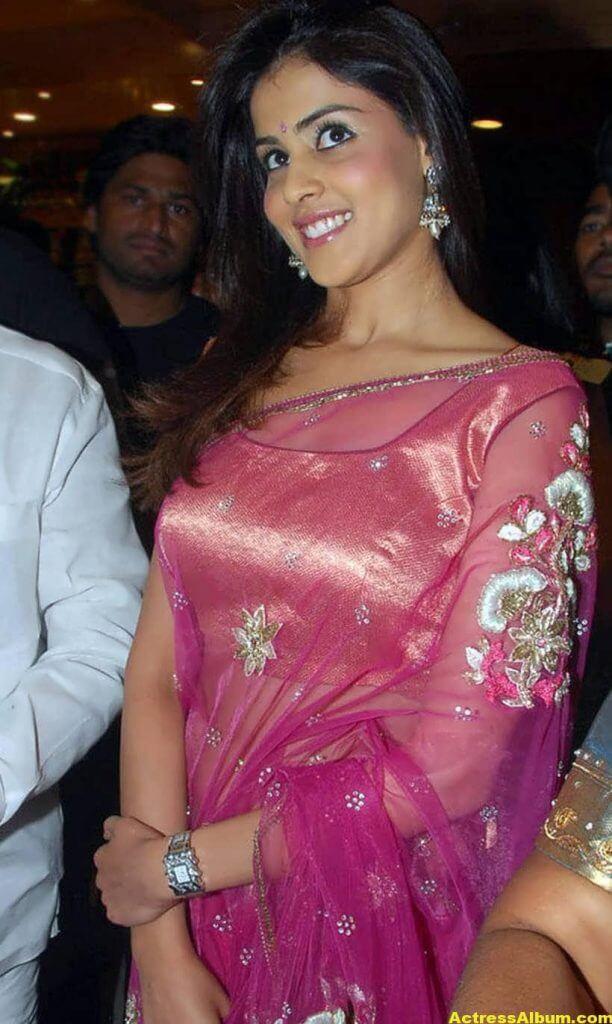 Genelia Hot Photos In Pink Saree 7