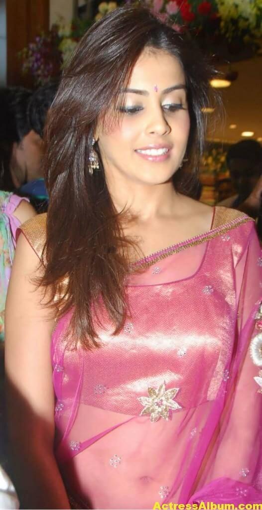 Genelia Hot Photos In Pink Saree 8