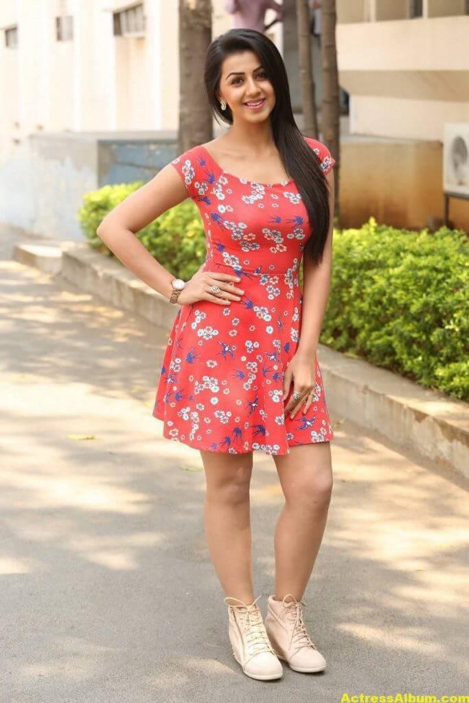 Nikki Galrani Hot Legs Showing Photos 4