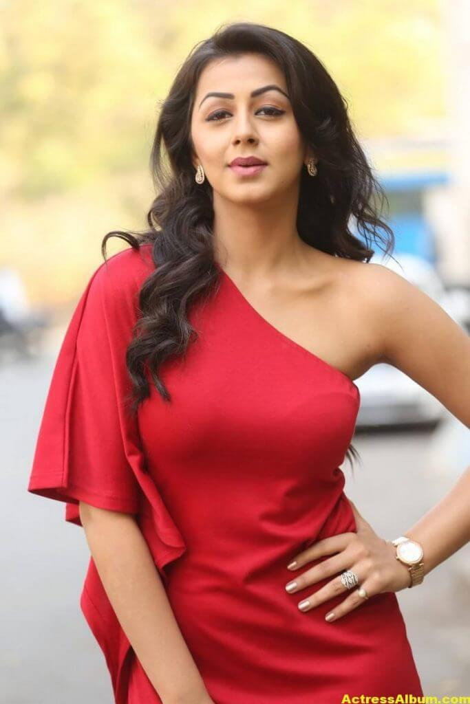 Nikki Galrani Stills Latest Photoshoot In Red Dress 4