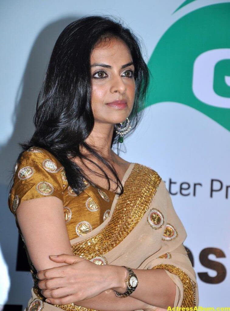 Richa Pallod Latest Photos In Hot Saree 2